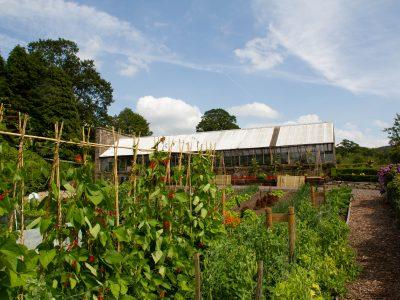 Garden Project